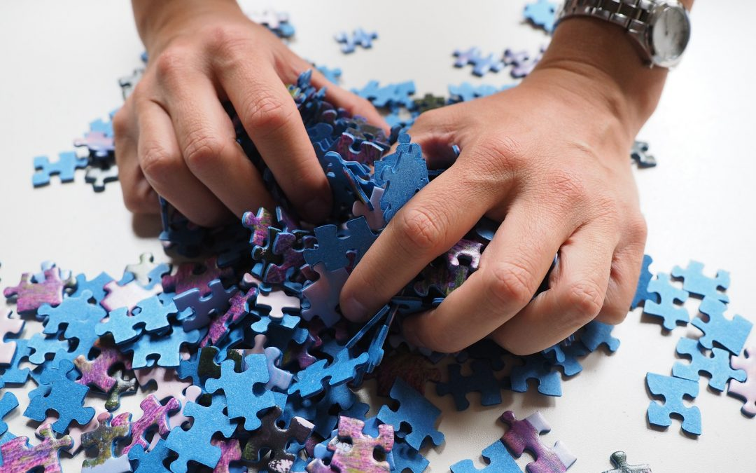 Puzzles and Project Management